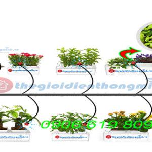 Hệ thống tưới nhỏ giọt tưới cây, tưới rau tự động