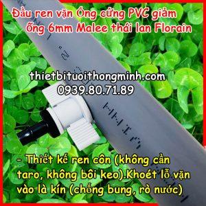 Khởi thủy ren vặn 6ly ống cứng pvc Florain