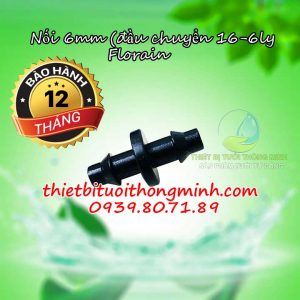 Nối ống 6ly Florain