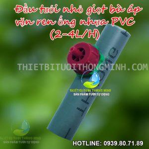 Đầu béc tưới nhỏ giọt ren vặn khởi thủy ống cứng pvc bình minh 21mm