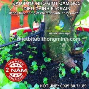Đầu béc tưới cây nhỏ giọt điều chỉnh có chân cắm Florain